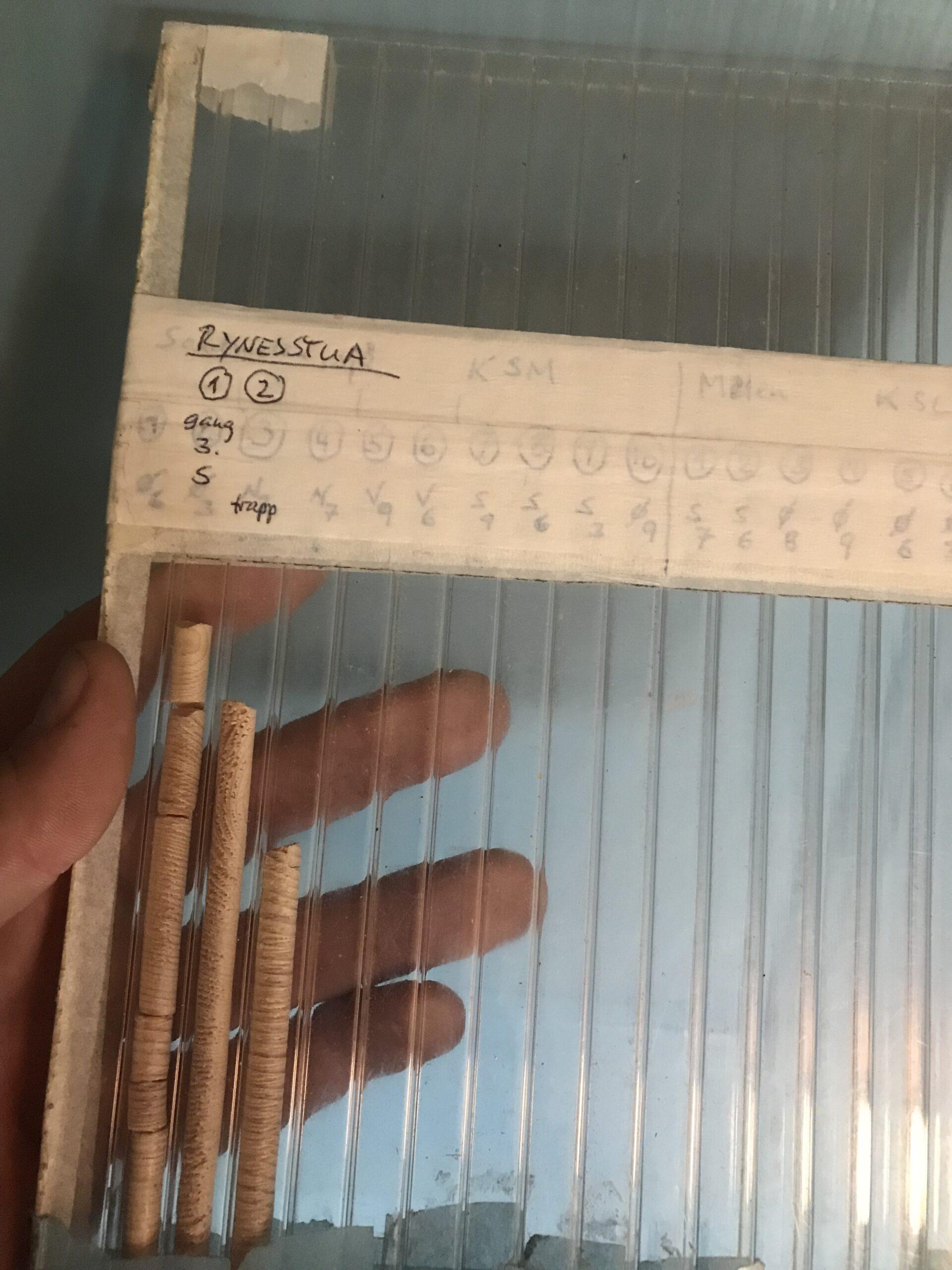 Boreprøver fra tømmer merket