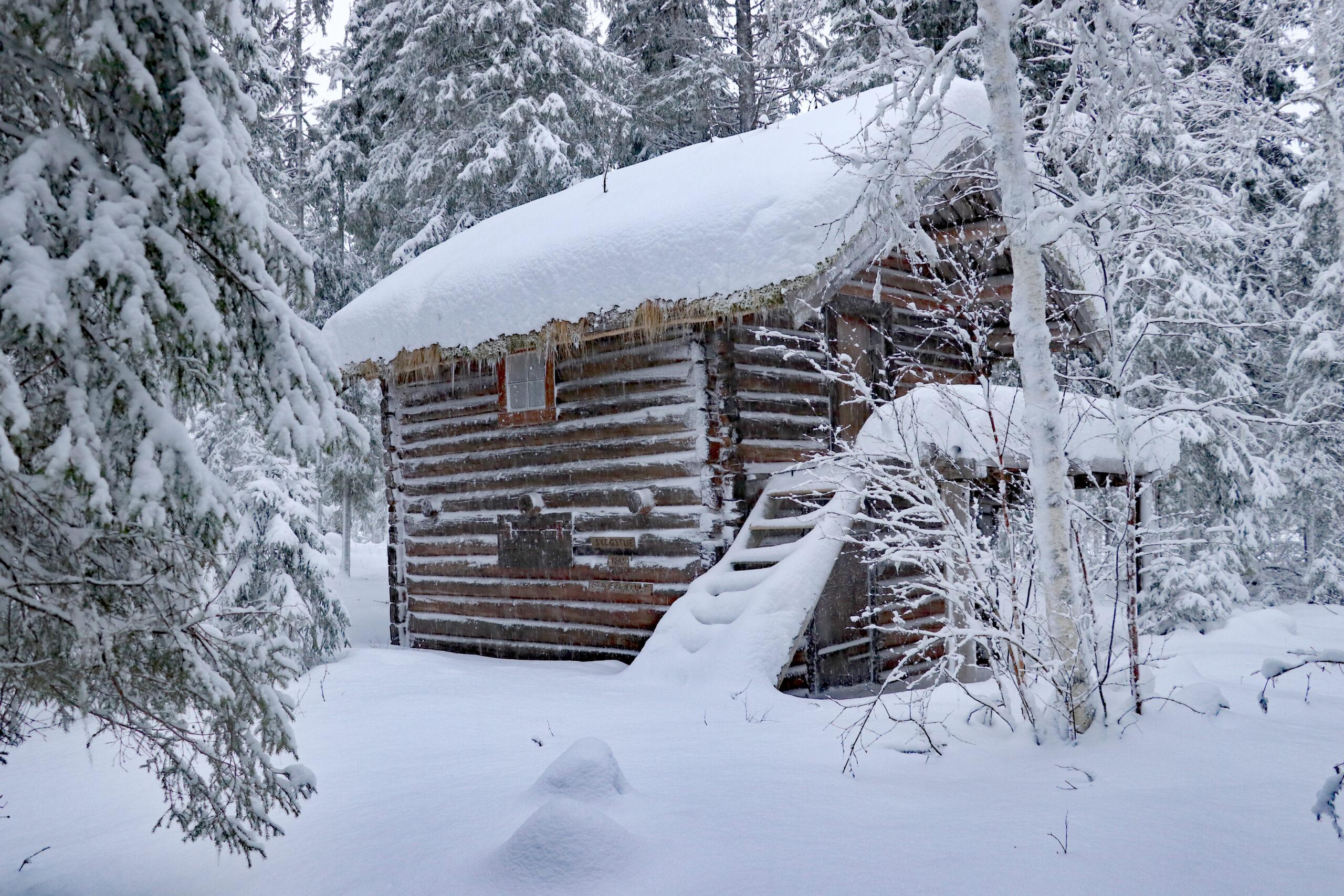 Viser skogsstua på Grane bygdetun med snø på taket