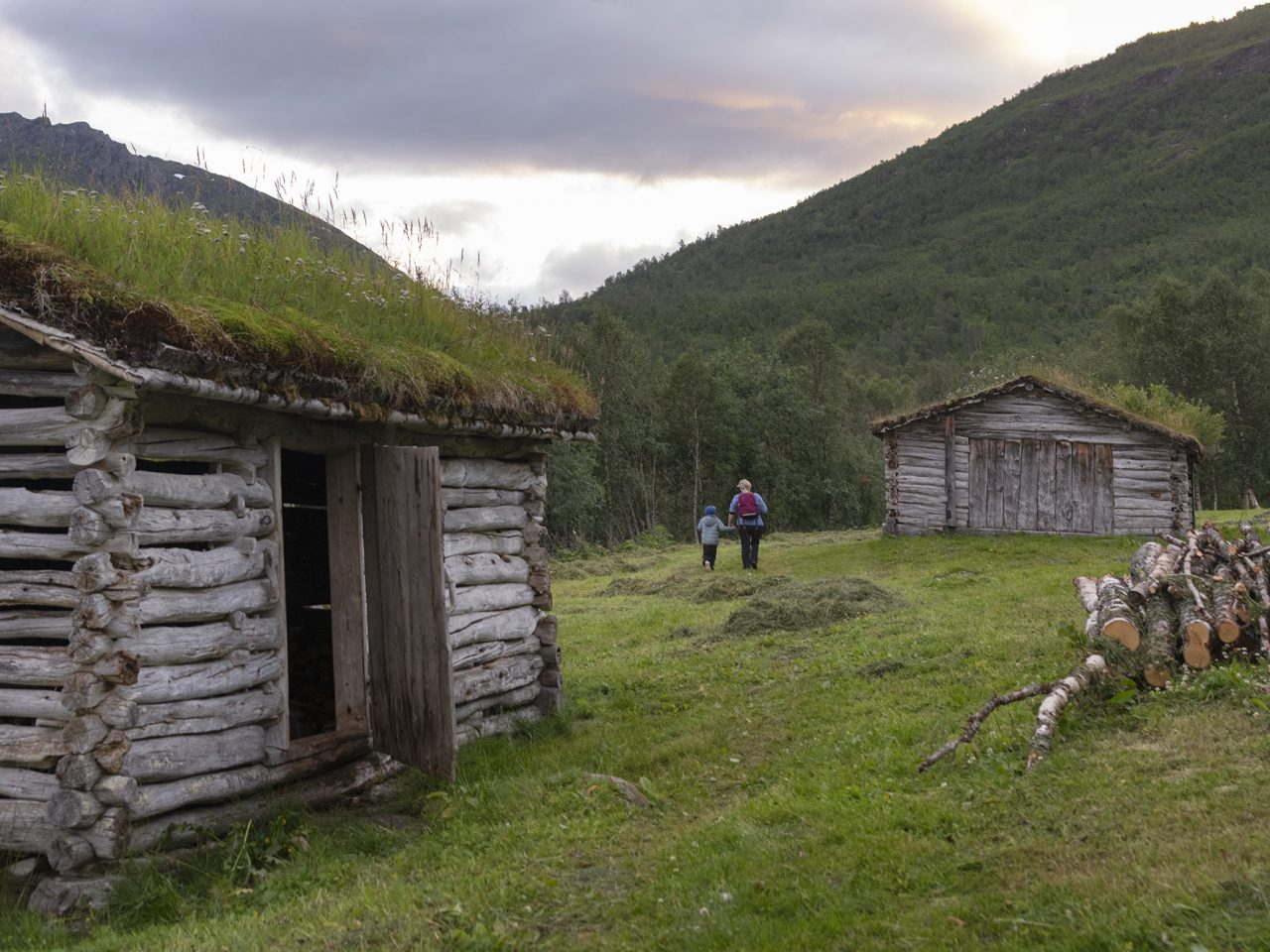 Vedskøtet og folk på Bredek fjellgård
