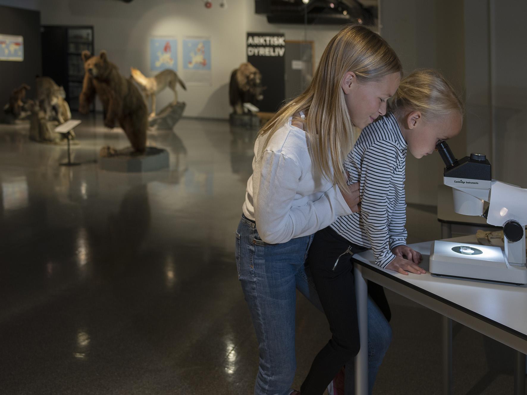 Barn som ser i mikroskop på Rana museum