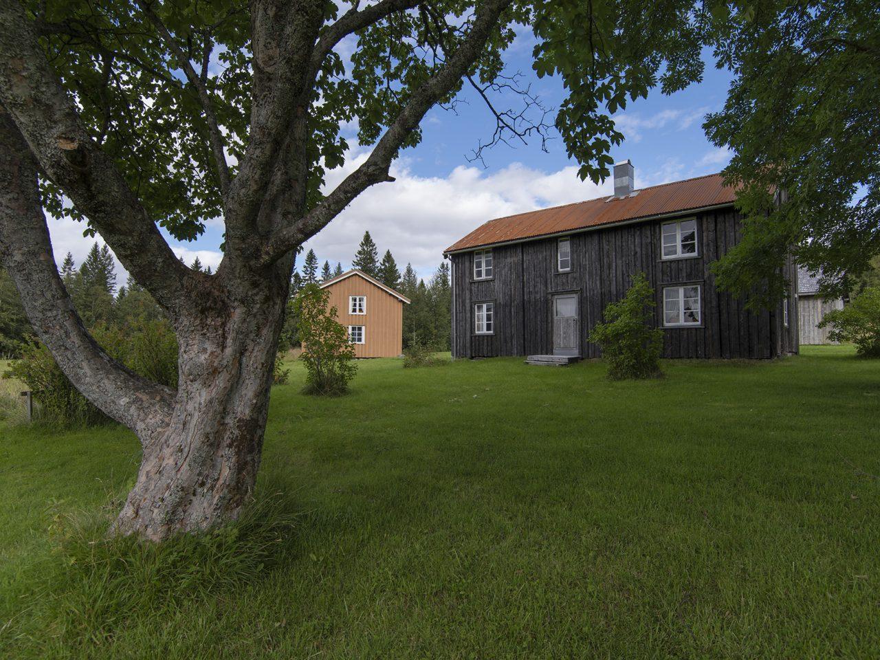 Hus og omgivelser på Bindal bygdetun