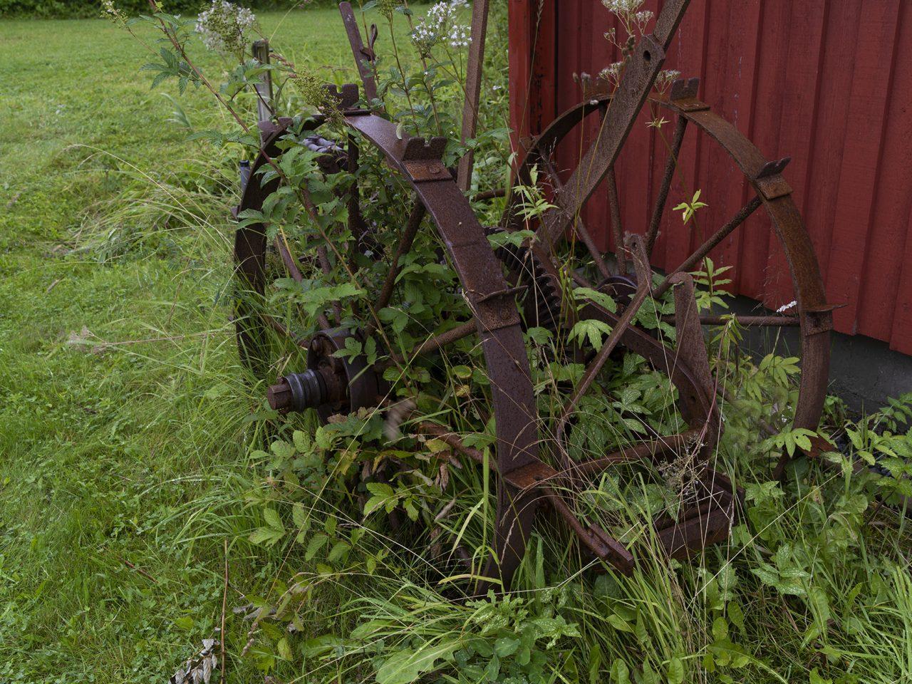 En gammel potetopptaker i gresset på Sømna bygdetun