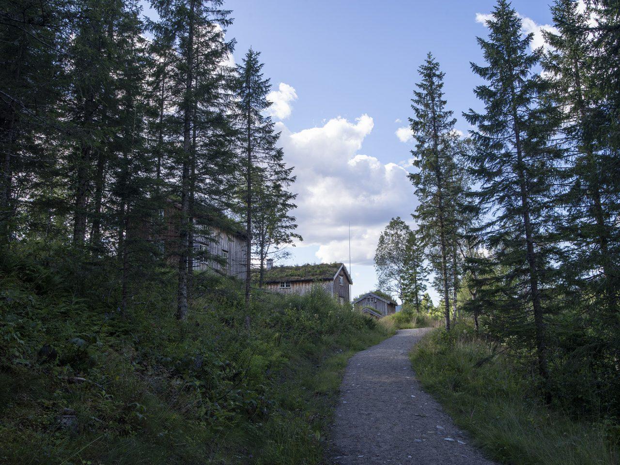 Hus og trær på Strøm minnetun